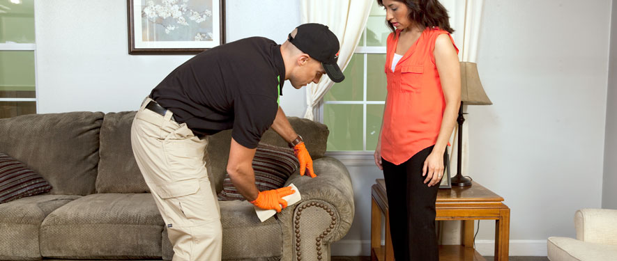 Bay St Louis, MS carpet upholstery cleaning